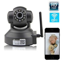 Plug & Play Pan Mobile View Network Megapixel Network Internet Camera