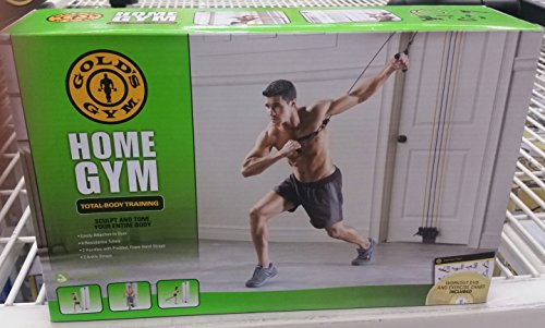 Gold s gym total body door attached resistance training system