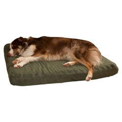 Paw Orthopedic Super Foam Pet Bed: Forest/large