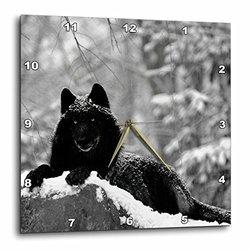 Rocky Mountain Wolf - Black White (dpp_100280_2)