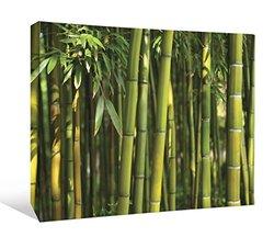 JP London Fresh Zen Green Bamboo Tree Forest Gallery Wrap Heavyweight Canvas Art Wall Decor, 1.5' High by 2' Wide