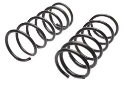 Raybestos Professional Grade Coil Spring Set - Black