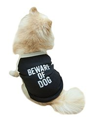 "POSH365 ""Beware of Dog"" Dog Tee Shirt, X-Large, Black"