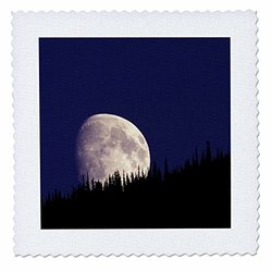 Montana, Glacier National Park. Moon and Forest - Us27 Gje0033 - Gavriel Jecan - Quilt Square, 25 by 25-Inch (qs_92042_10)