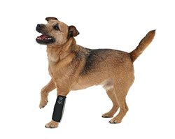Pet Life Joint Protective Reflective Pet Sleeves - Black - Size: Medium
