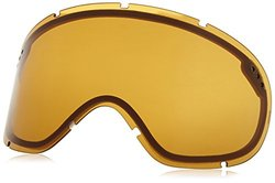 Electric Adult RIG Lens, Bronze