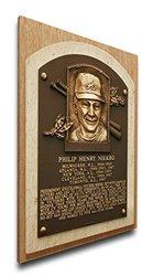 MLB Atlanta Braves Phil Niekro Baseball Hall of Fame Plaque - Brown