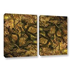 """ArtWall Cora Niele's Acer Palmatum Dissectum Ornatum Canvas Set, 24""""X36"""""""
