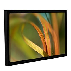 """ArtWall 16""""x24"""" Cora Niele's Autumn Grass Gallery Wrapped Framed Canvas"""