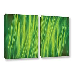 """ArtWall Cora Niele's Hordeum 2 Piece Gallery Wrapped Canvas Set, 18 by 28"""""""