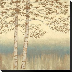 """Birch Silhouette 1 by James Wiens Stretched Canvas Print - 22"""" x 22"""""""