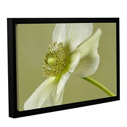 """Cora Niele's Anemone Gallery Wrapped Floater Framed Canvas - 16x24"""""""