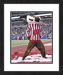 "NCAA Wisconsin Badgers Mascot, Beautifully Framed and Double Matted, 18"" x 22"" Sports Photograph"