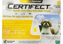 Certifect for Dogs 5-22 lbs - 6 Month Supply