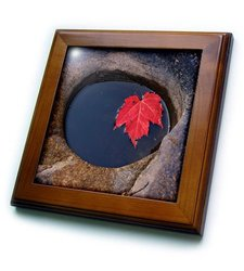 """ft_209965_1 Michigan, Black River Red Maple Leaf in a Small Lava Hole Framed Tile, 8 by 8"""""""