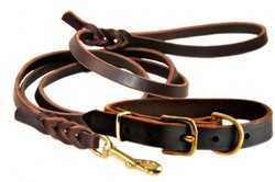 "Dean and Tyler Bundle Brass Collar 18""X1"" - 6' Leash Brass Hook - Brown"