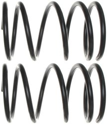 Raybestos 587-1145 Professional Grade Coil Spring Set