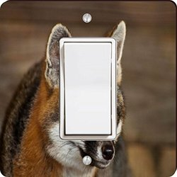 Rikki Knight Baby Fox Close-Up Single Rocker Light Switch Plate