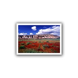ArtWall Dean Uhlinger 'Dinosaur Colorado' Unwrapped Canvas Wall Art, 36 by 52-Inch