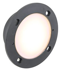 American Lighting Indoor Outdoor LED Steplight (CIR-WW)