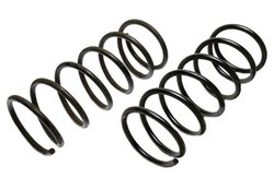 Raybestos Professional Grade Coil Spring Set (585-1139)