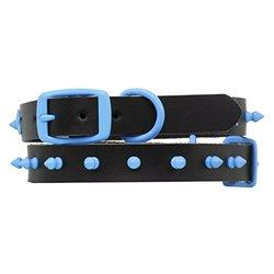 Platinum Pets 15-Inch Genuine Black Leather Collar with Spikes, Medium, Sky Blue