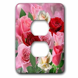 lsp_214273_6 Pink Red and White Rose Garden with Soft Bokeh Background 2 Plug Outlet Cover