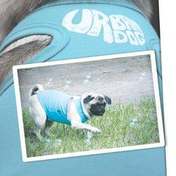 Urban Dog Wear Dog's Butterfly Hearts Shirt - Pink - Size: 10