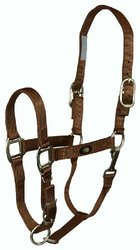 "Hamilton 1"" Nylon adjustable Horse Halter with Brushed Hardware and Snap (300 to 500 lb. Horse), Brown, (B 1DAS YRBR), Yearling"