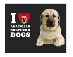 Tree-Free Greetings Heart Anatolian Shepherd Dogs 18-8 Tumbler - 14 Oz.