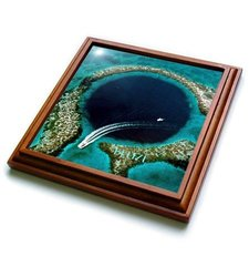 "3dRose trv_109479_1 Great Blue Hole in Belize Trivet with Ceramic Tile, 8 by 8"", Brown"