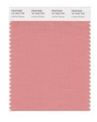 PANTONE SMART 16-1520X Color Swatch Card - Lobster Bisque