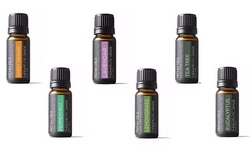 Friyah oils Aromatherapy Essential Oils Gift Set - Pack of 8 - 1 oz.ea.