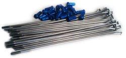 Bulldog OE Spoke Nipple Kit Stainless Steel - Blue