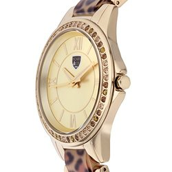 Women's Fashion Watch: Pc-14131-a-62626868/Gold Band-gold Dial