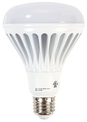 Ohyama Lights LED Bulb, BR30, 800Lumens, 2700K
