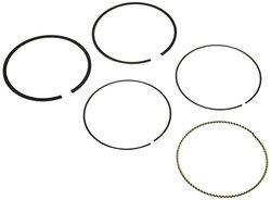 Hastings 2C5219S Piston Ring Set