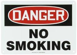 Danger No Smoking Sign, 14 x 10In, AL, ENG