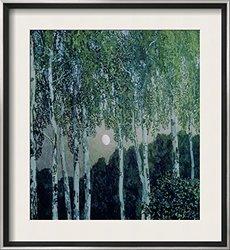 "Art.com Birch Trees - Aleksandra Jakovlevic Golovin Framed 29""x26"" - Green"
