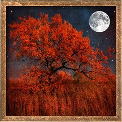 Art Halloween Color by Philippe Sainte Laudy Framed Print - Red