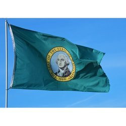 Allied Flag 3-Foot by 5-Foot Washington Nylon Outdoor State Flag - Green