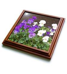"""3dRose trv_19176_1 Violets Trivet with Ceramic Tile, 8 by 8"""", Brown"""