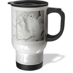 3dRose Night Owl Travel Mug - Stainless Steel - 14-Ounce