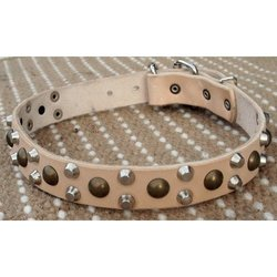 """Dean and Tyler Size 28"""" by 1 1/5"""" """"Bumps & Bits"""" Dog Collar - Tan"""