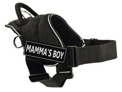 Dean & Tyler Mamma's Boy Dog Harness - Black - Size: XS
