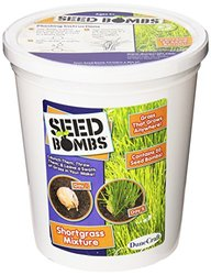 Dunecraft Shortgrass Mixture Seed Bomb Bucket Science Kit