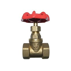 Red-White Valve 112RW211AB Lead Free Economy Globe Valve Threaded, 1 1/2""