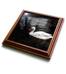 """3dRose trv_1015_1 White Duck Trivet with Ceramic Tile, 8 by 8"""", Brown"""