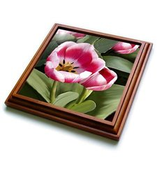 "3dRose trv_1206_1 Tulips Trivet with Ceramic Tile, 8 by 8"", Brown"