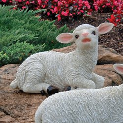 "Design Toscano Yorkshire Lamb Statue - White - Size: 9"""